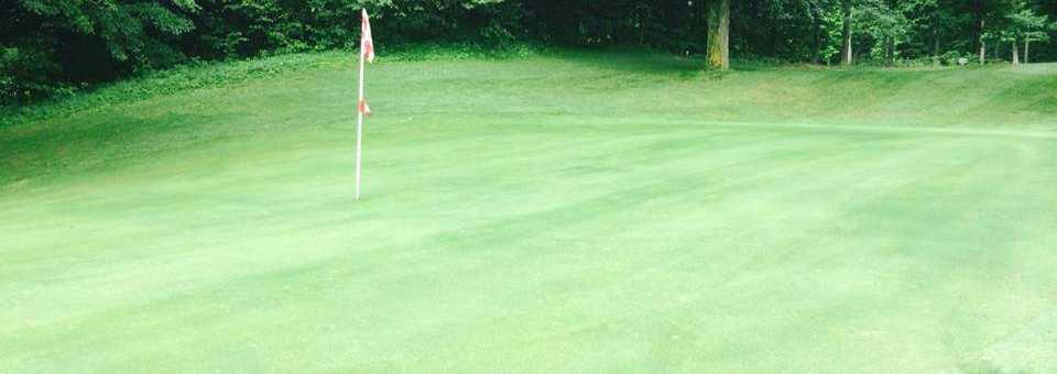 The Bellaire Centennial Golf Course