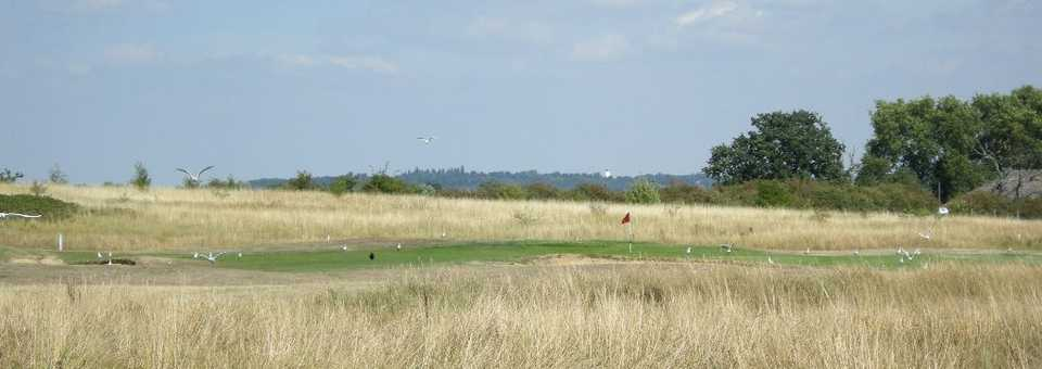 Fairlop Waters Golf Club - Main Course