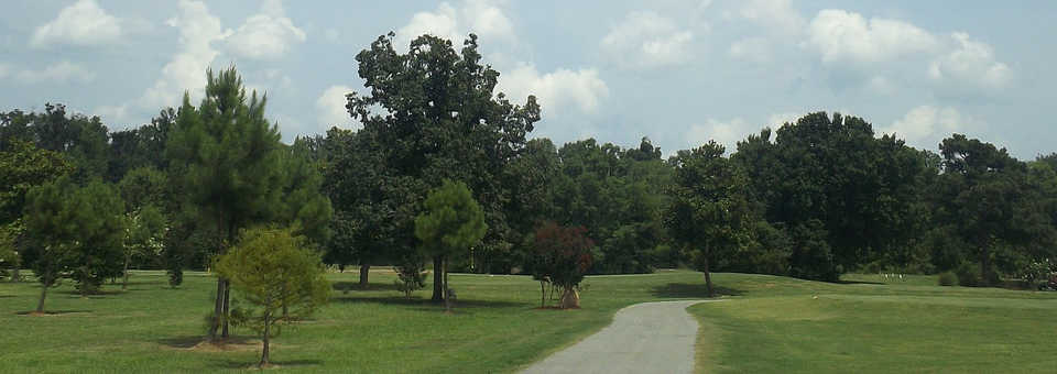 Links at Tuscaloosa