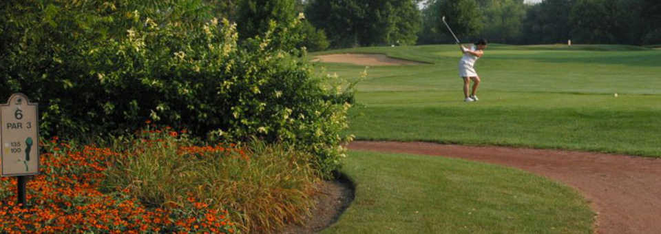 Twin Lakes Golf Course (Westmont, IL)