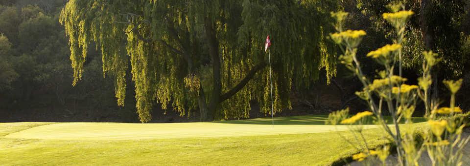 Ben Brown's Golf Course
