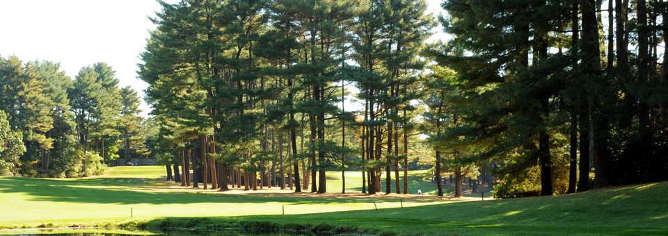 Needham Golf Club