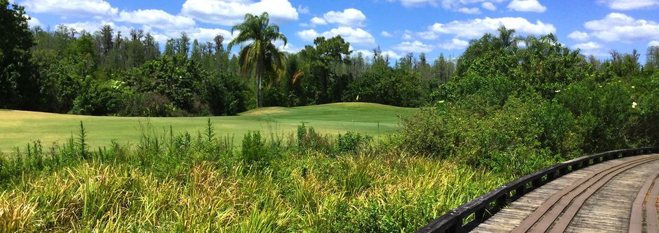 Heritage Harbor Golf and Country Club (Lutz, FL)