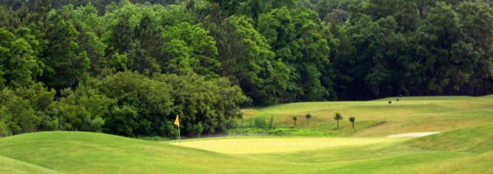Crosswinds Golf Club (GA)