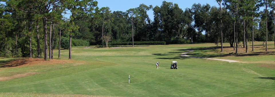 Cypress Lakes Golf Club - FL