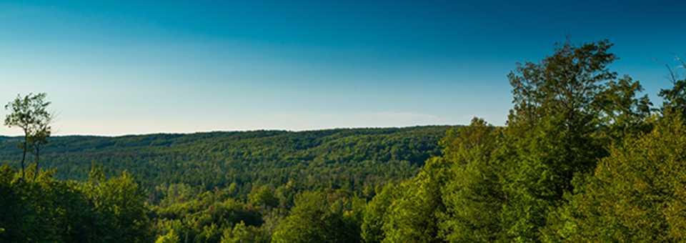 Treetops Resort - Masterpiece Course