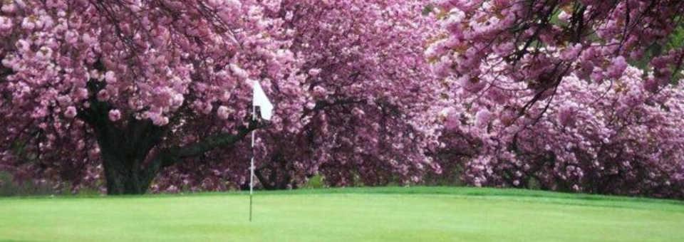 Mountain View Golf Course