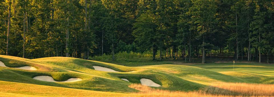 The Golf Club At Viniterra