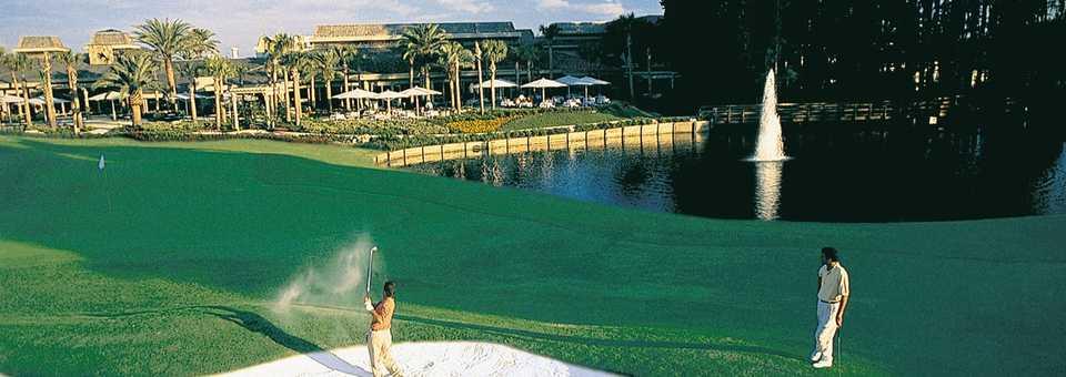 Saddlebrook Resort - Palmer Course