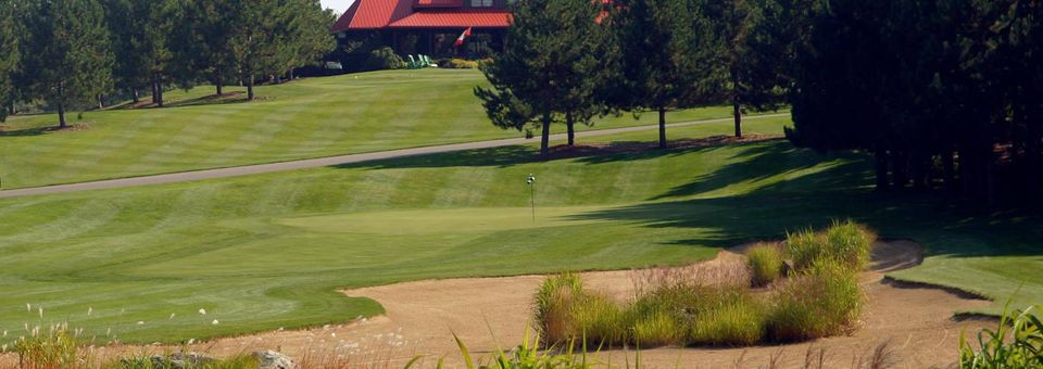 The Diamond 'in the Ruff' Golf Club