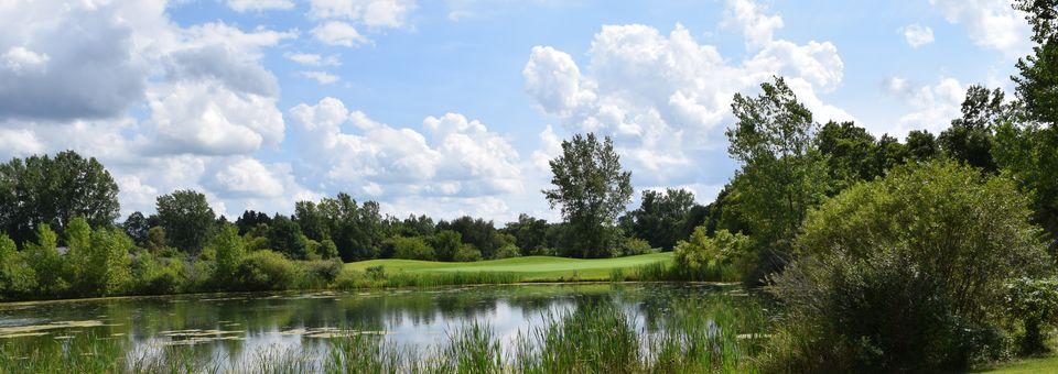 Willow Wood Golf Club