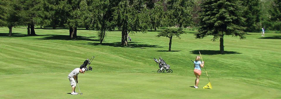 Vernonia Golf Club