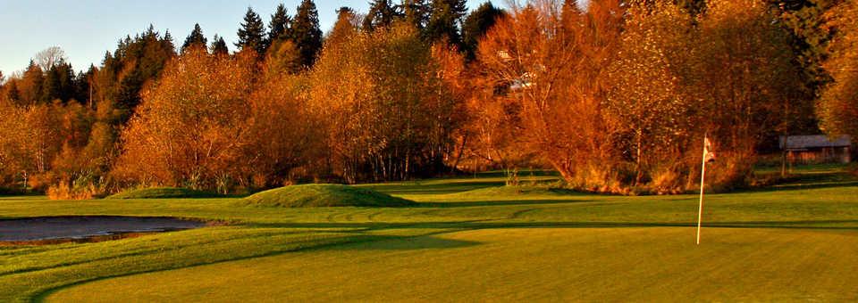 Birdies & Buckets Family Golf Centre - 9-Hole Course