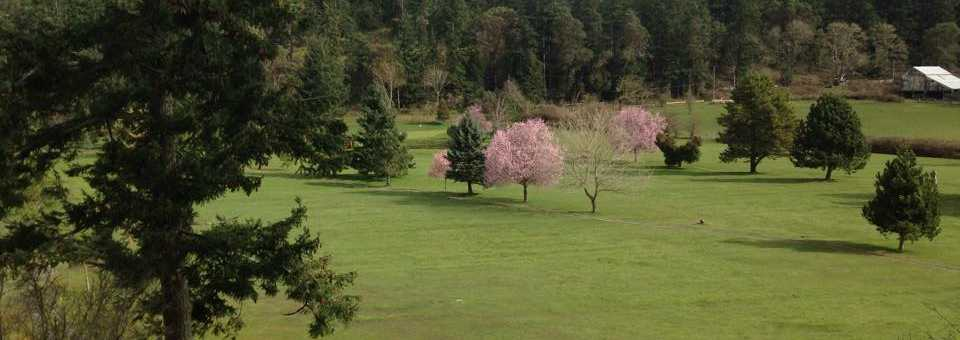 Pender Island Golf & Country Club