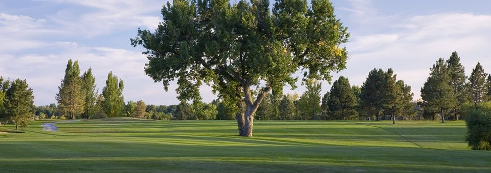 Hyland Hills Golf - Blue Course