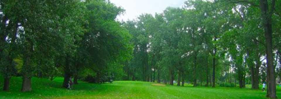 Scherwood Golf - Executive 9 Short Course