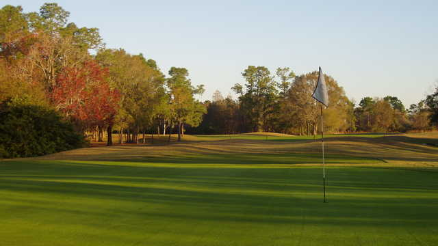 The Eagles Golf Club - Forest