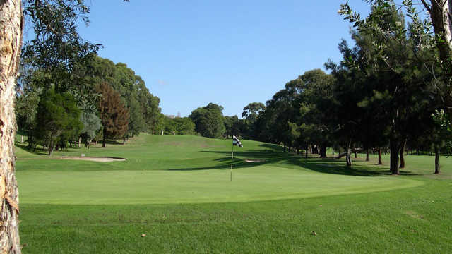 Balgowlah Golf Club