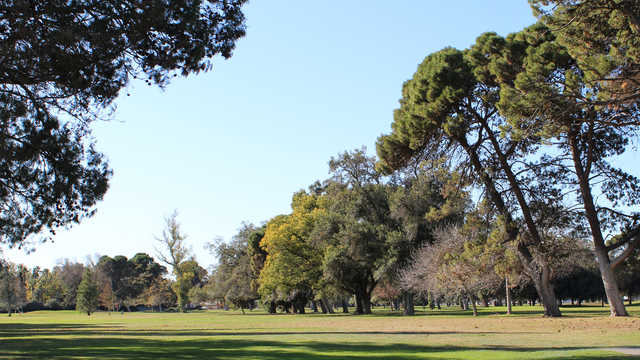 Modesto Municipal Golf Course
