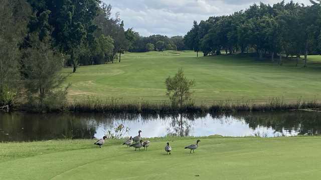 Riverlakes Golf Course